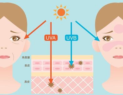 2つの紫外線