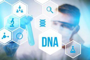 肌のDNA