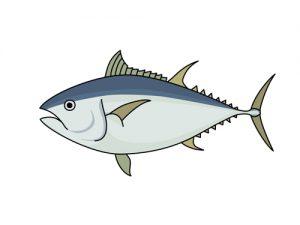 オメガ3を含む魚